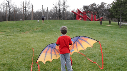 Kite at Laumeier Sculpture Park