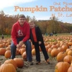 Our Favorite St. Louis Pumpkin Patches