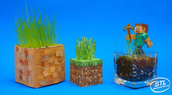 Minecraft grass blocks