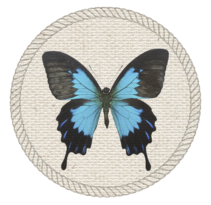 butterfly badge for scouts
