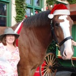 Horses Host Toys for Tots at Grant's Farm