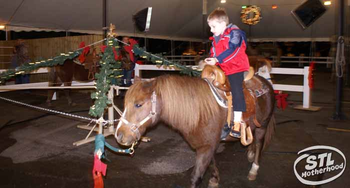 Kid on a pony ride at the Way of Lights