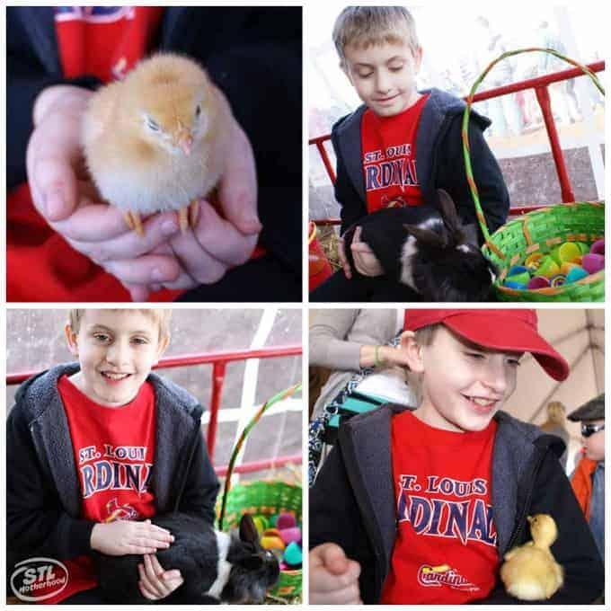 Eckerts egg hunt
