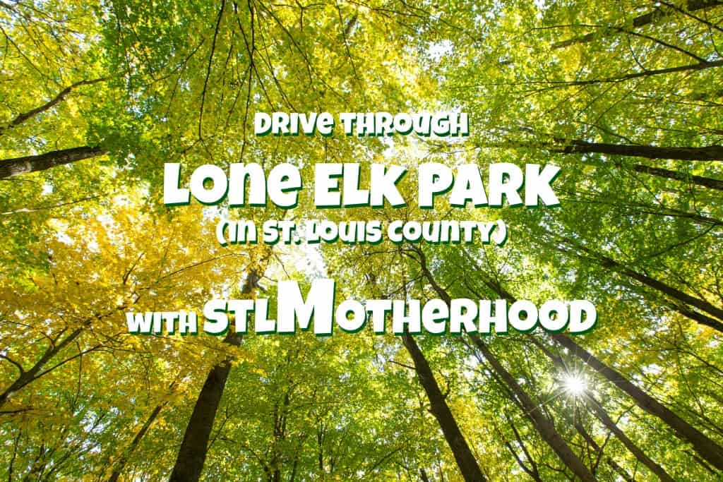 Lone Elk Park virtual tour