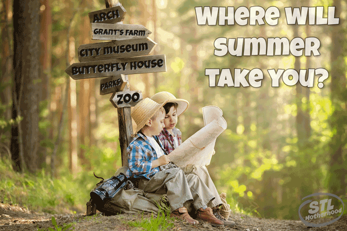 where will summer take you