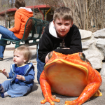 St. Louis Zoo: Is a Membership Worth the Price?