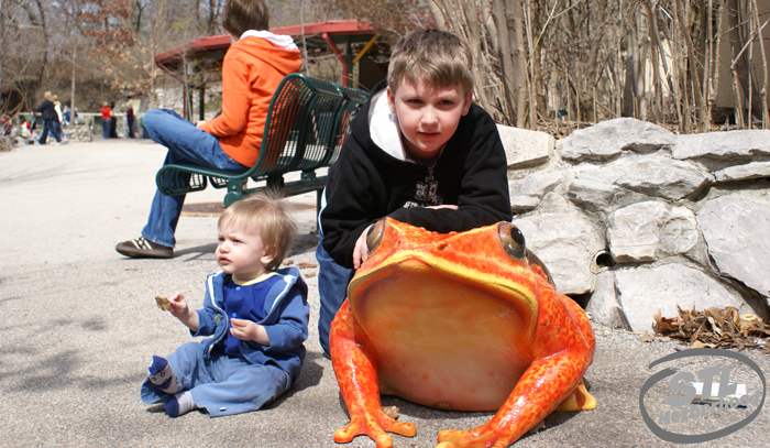 boys at the st louis zoo playing with frogs