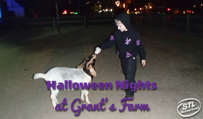 Halloween Nights at Grant's Farm: Spooky Fun for Little Ones