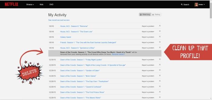 Clean up Netflix Profile