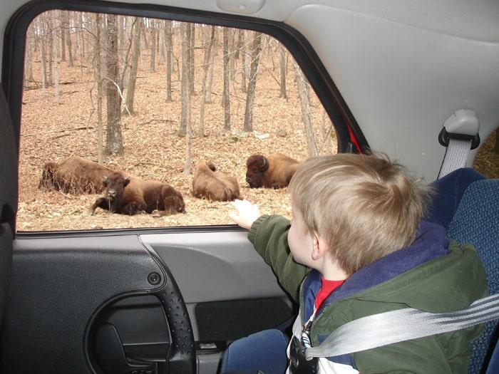 Lone Elk Park St. Louis County