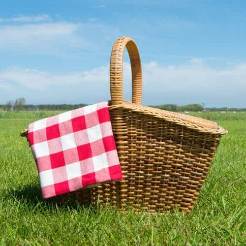 best picnic parks in St. Louis