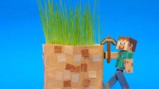 Minecraft for Real: DIY Grass Blocks