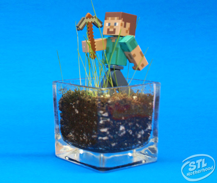 minecraft grass block glass