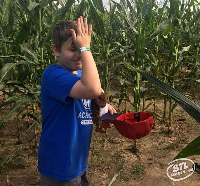 kid in a blue shirt lost in a corn maze