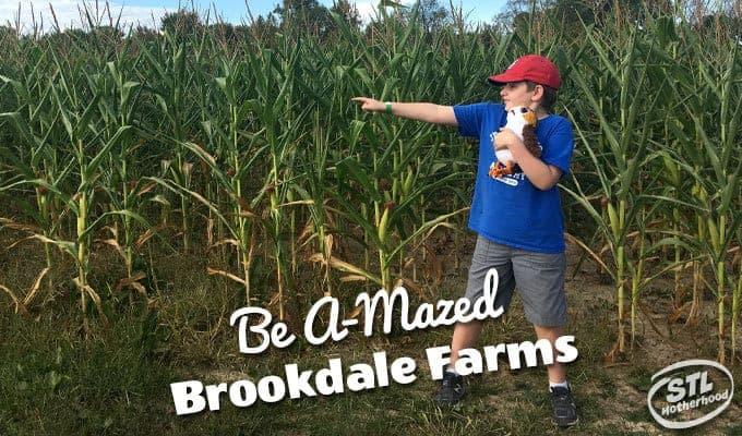 Brookdale Farm Corn Maze