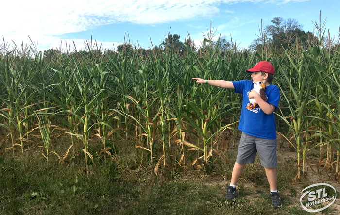 kid in a blue shirt with a stuffed animal, pointing the way out of a maze at Brookdale farm
