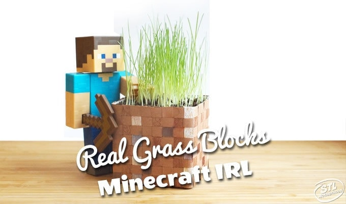 Minecraft real grass blocks craft