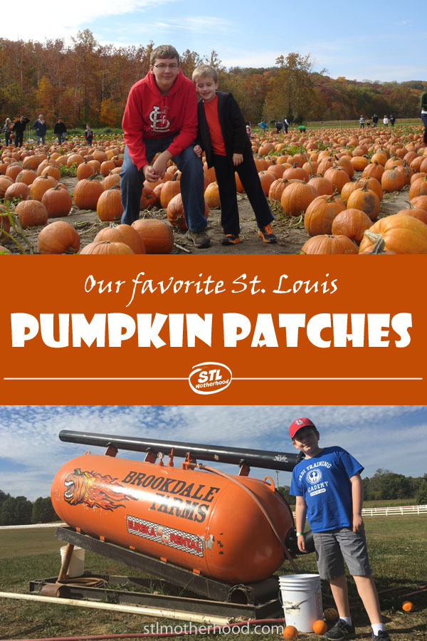 Where do you go to get the perfect Halloween pumpkin AND have some family fun? I've got a whole bunch of ideas for you!