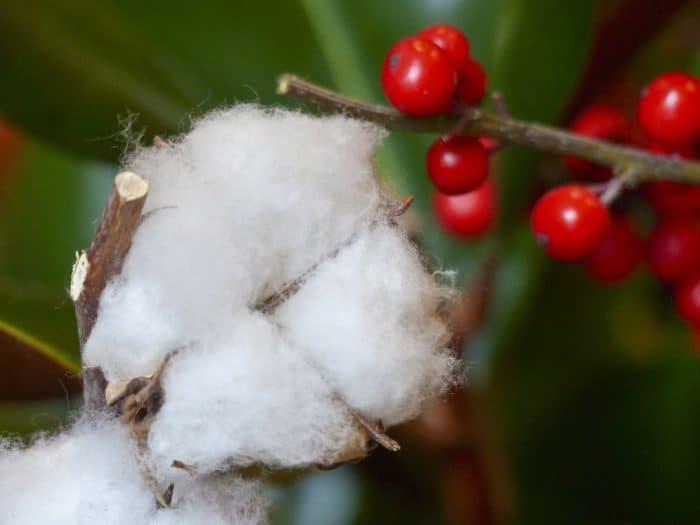 christmas cotton ball
