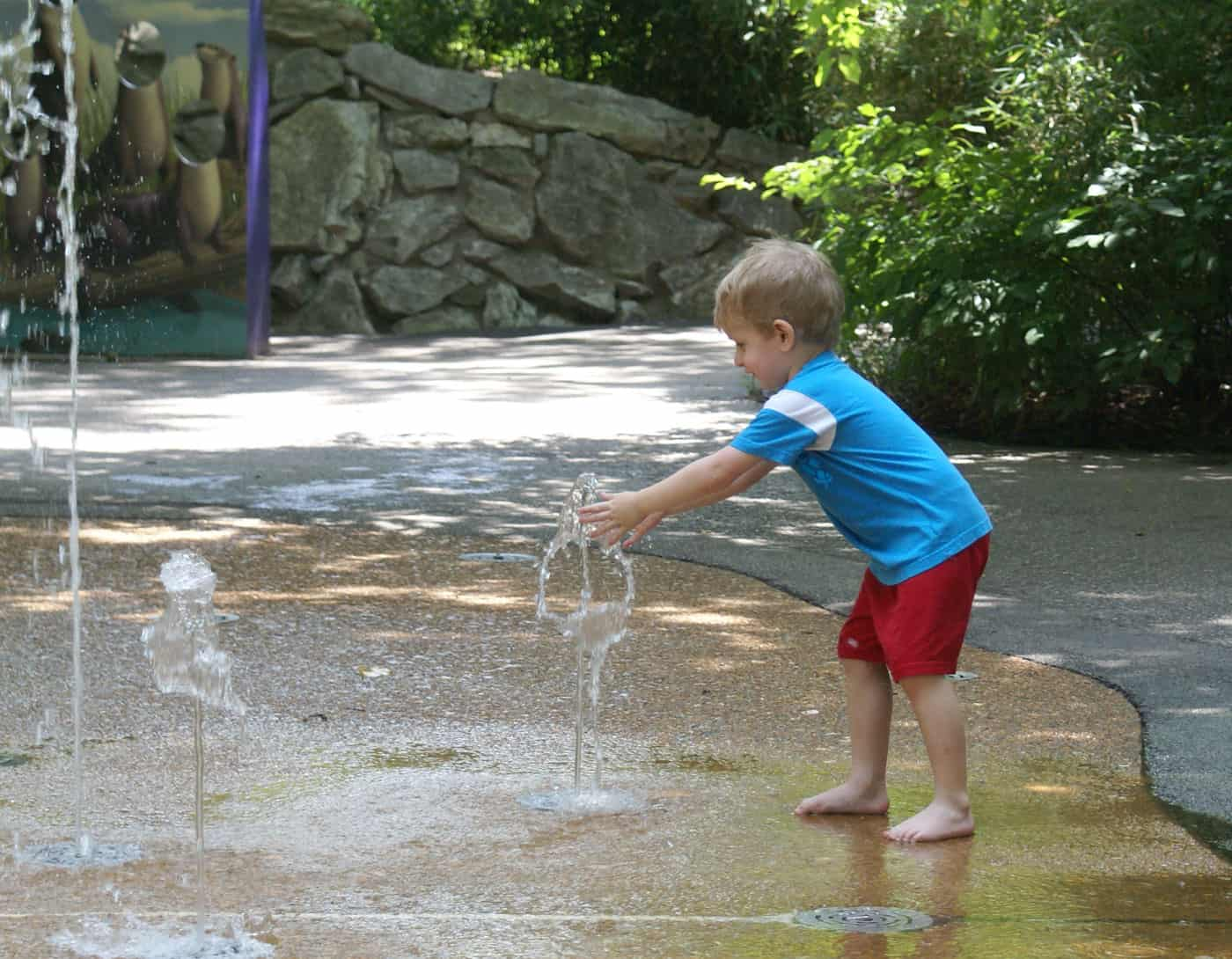 kid playing with fountain at the children's zoo in st. louis
