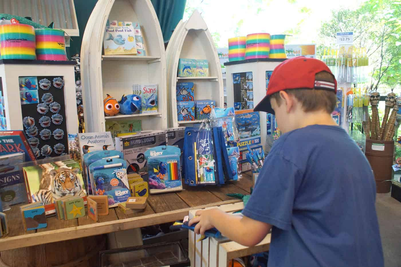 Kid shopping at a St. Louis Zoo gift shop full of fish toys.