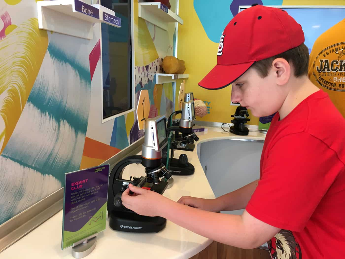 Kid experiments with a microscope during the Curiosity Cube tour in St. Louis