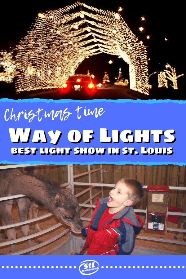 Hands down the best Christmas light show in the St. Louis area is the Way of Lights in Belleville. There's a million twinkle lights that tell the real story of Christmas (no Santa here or silly snowmen here) plus a fantastic petting zoo and indoor activities for little ones. (And it's FREE) #Christmaslights
