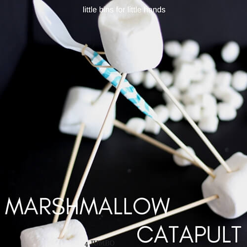 Build A Marshmallow Catapult