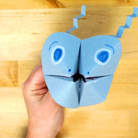 How to Fold a Paper Cootie Catch