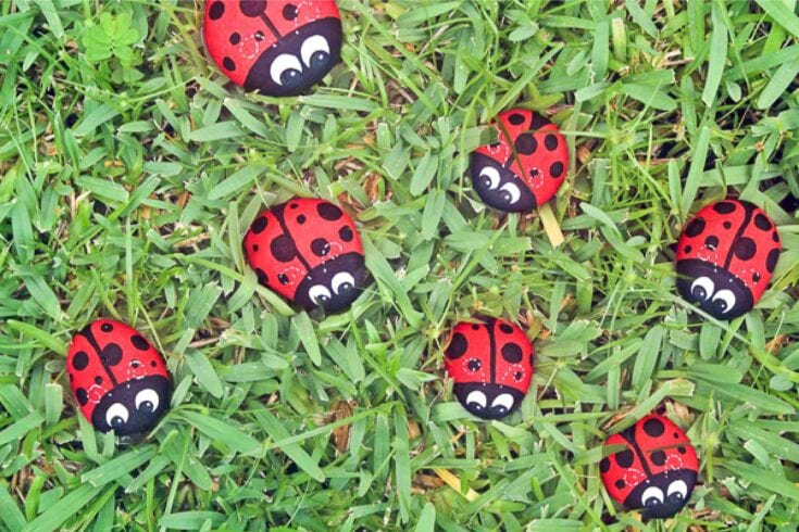 These Ladybug Painted Rocks Are Fun & Easy For Kids