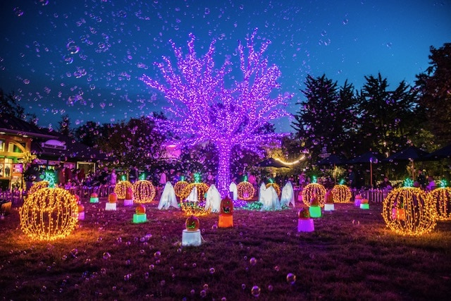 Saint Louis Zoo lit up at night for boo at the zoo