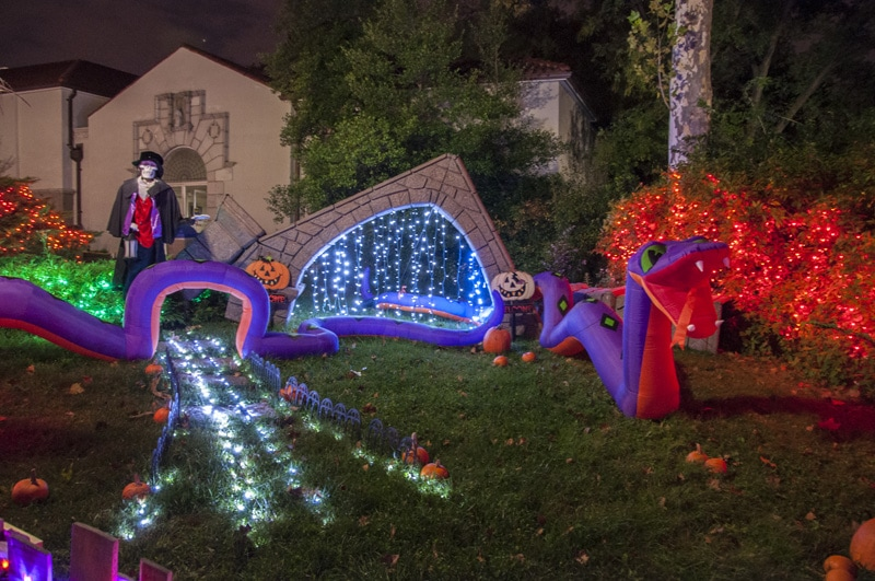 Saint Louis Boo at the Zoo decorated for Halloween in twinkle lights