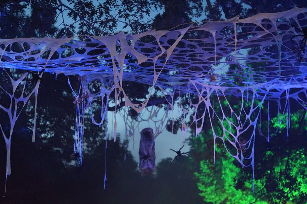 Drive through spooky webs at Grant's Farm this Halloween.