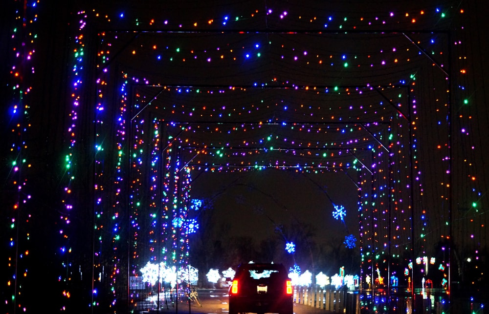 twinkle light tunnel at Lot of Lights