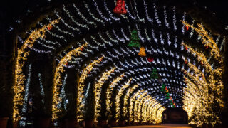 twinkle lights in a tunnel for Christmas